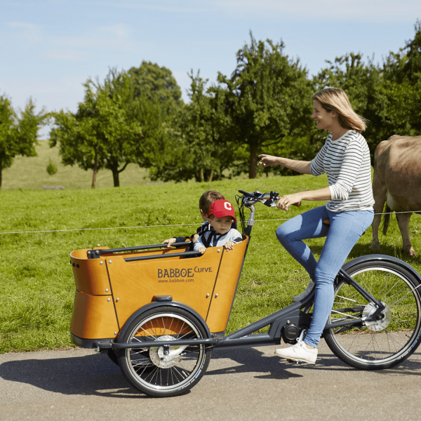 babboe curve mountain e babboe cargo bikes. Black Bedroom Furniture Sets. Home Design Ideas